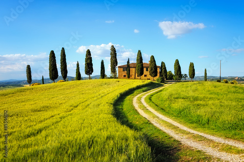 Foto  Tuscany, farmland, cypress trees and white road on sunset. Siena