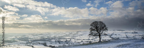 Printed kitchen splashbacks Beige Stunning Winter panoramic landscape snow covered countryside wit