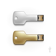 USB Key Flash Drive Stick Memory Vector Isolated