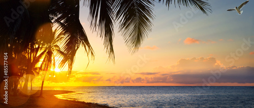 Poster de jardin Orange Art Beautiful sunrise over the tropical beach