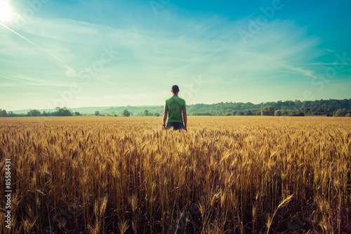 Valokuva  Man from behind in a wheat field in a summer day