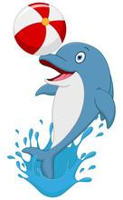 Happy Dolphin Cartoon Playing Ball