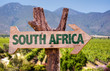 canvas print picture - South Africa wooden sign with vineyard background