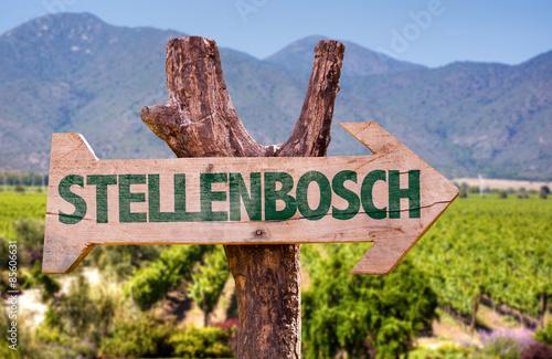 Foto op Plexiglas Zuid Afrika Stellenbosch wooden sign with vineyard background