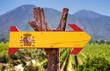 Leinwandbild Motiv Spain Flag wooden sign with vineyard background