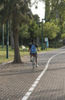 Boy riding a bicycle in a park