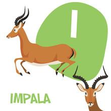 Funny Cartoon Animals Vector Alphabet Letter Set For Kids . I Is