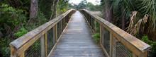 Walkway Over The Marsh Lands O...