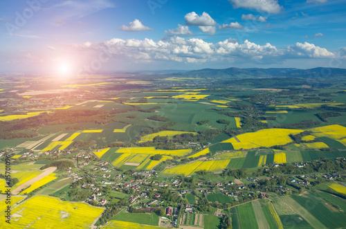 Foto op Aluminium Heuvel Sunset above colza field