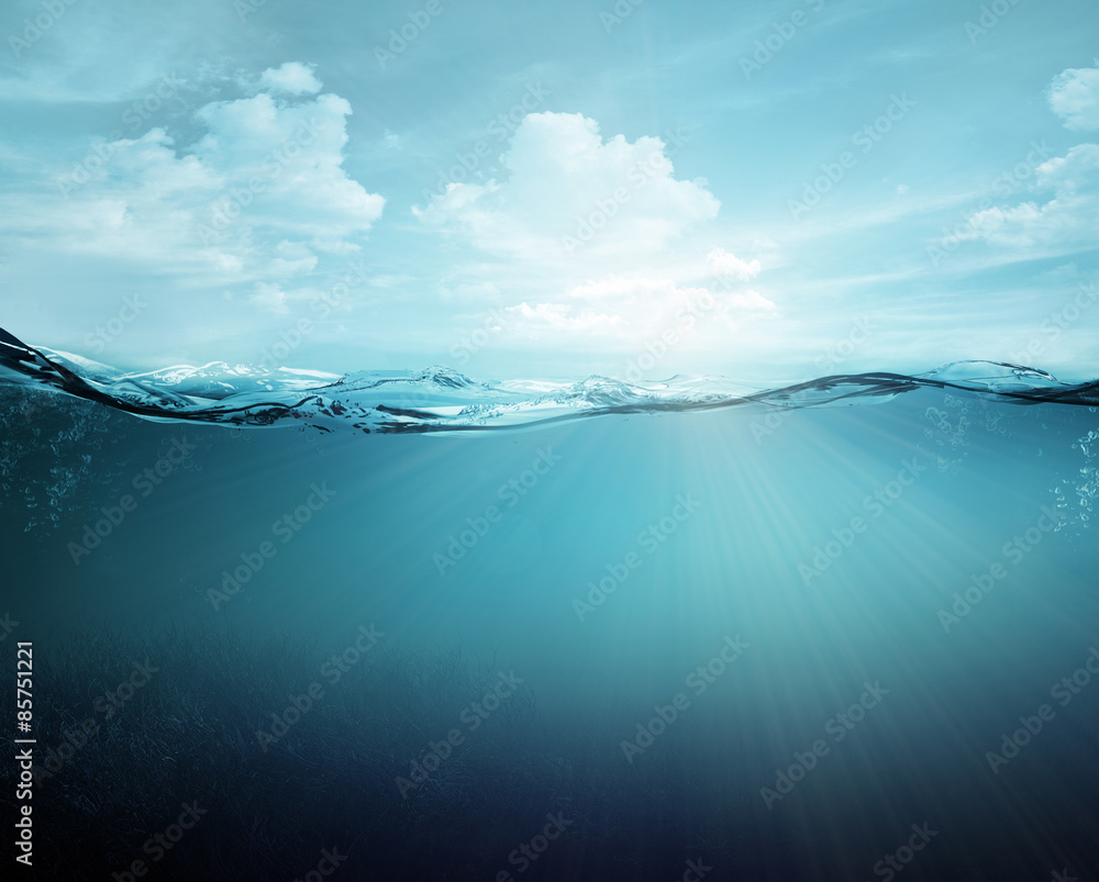 Fototapeta underwater