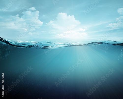 Obraz na plátne underwater
