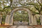 Fototapeta Sawanna - Wormsloe Plantation Historic Site near Savannah, Georgia