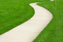 Pathway Through Green Lawn