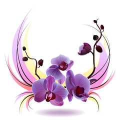 Naklejka Vector greeting card with orchids bouquet