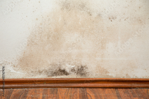 Photo Black mould buildup in the corner of an old house