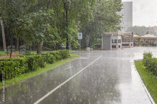 Summer heavy rain in the park фототапет
