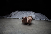 The Dead Woman's Body. Focus O...
