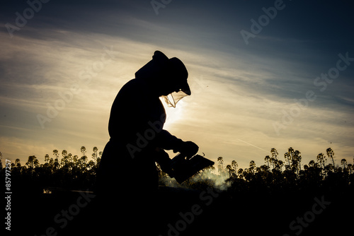 Working apiarist silhouette Canvas Print
