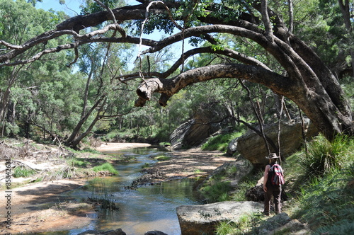 Goulburn River National Park Canvas-taulu