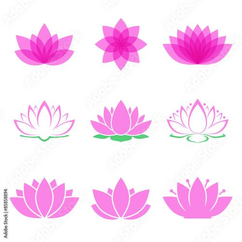 Photographie  lotus flower set