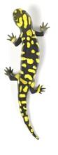 3d Render Of Tiger Salamander