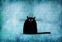 Black Cat On Background Painted Wall