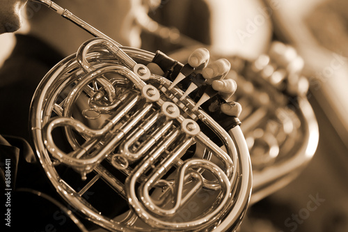 Fotografia  French horn in the hands of the musician