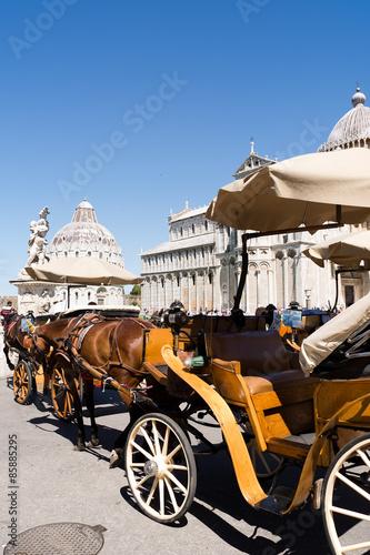 Fototapety, obrazy: horse carige in Pisa