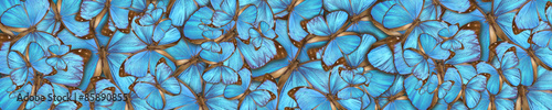 Foto op Plexiglas Vlinder abstract background tropical butterflys Morpho menelaus