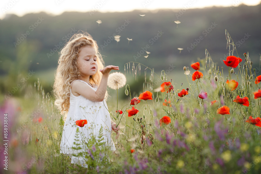 Fototapety, obrazy: A little girl with a dandelion on a summer meadow