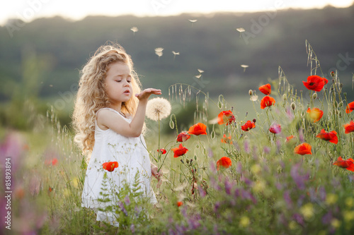 Poster Pissenlit A little girl with a dandelion on a summer meadow