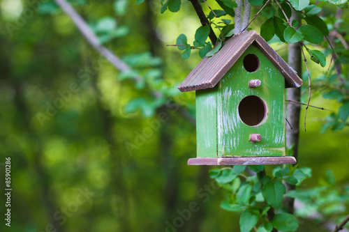 Foto Green birdhouse hanging from tree