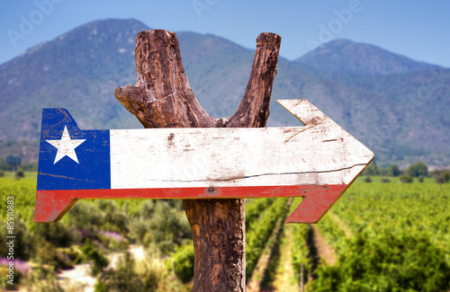 Poster Amérique du Sud Chile Flag wooden sign with winery background