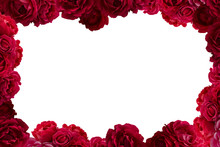 Frame With Bush Of Red Rose Fl...
