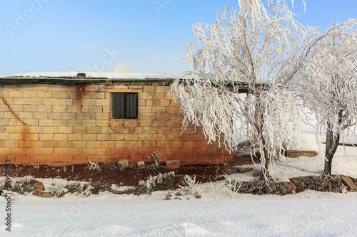 Fotografering  Cottage in a rural area covered with snow