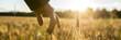 Leinwandbild Motiv Man touching an ear of wheat at sunrise