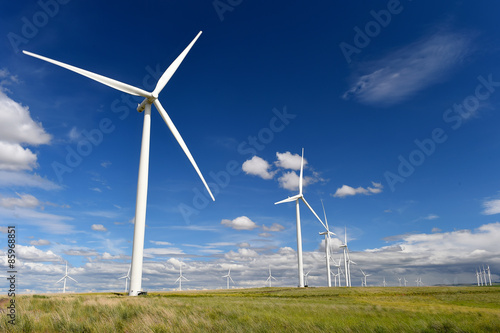 Fotografia  wind farm turbines green grass and blue sky, washington state, u