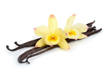 Vanilla Pods With Two Yellow Orchids.