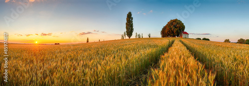 Montage in der Fensternische Landschappen Summer wheat field panorama countryside, Agriculture