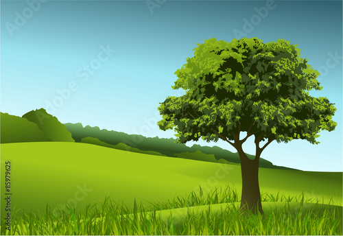 In de dag Lime groen Green landscape with lonely tree