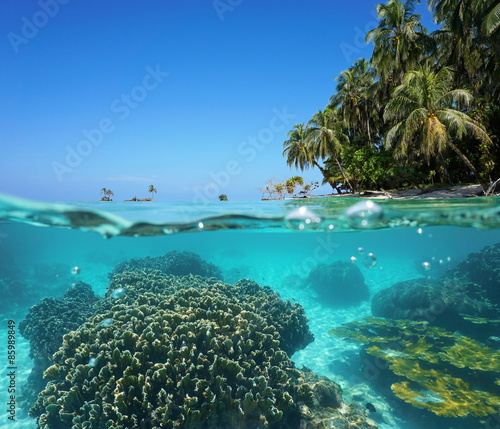Spoed Foto op Canvas Eiland Over under sea tropical shore and coral underwater