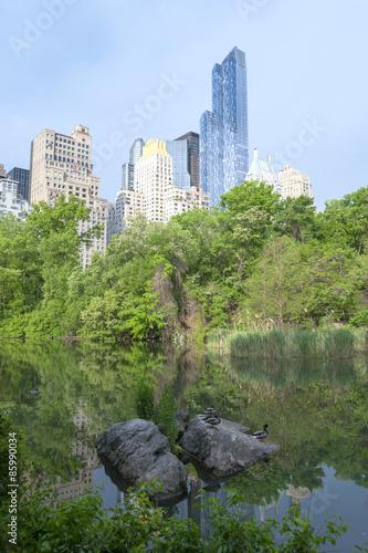 Central Park Sunset in New York City Fototapete