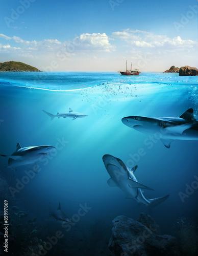 szablon-projektu-z-czescia-podwodna