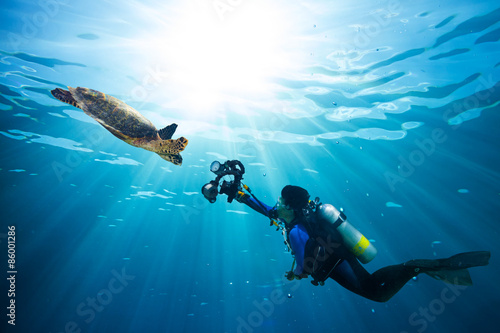 Photo Stands Diving diver takes photo of sea turtle in the blue ocean