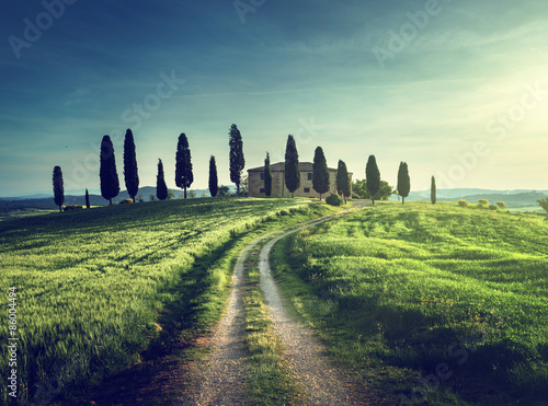 Photo sur Aluminium Pistache Classic Tuscan views in spring sunset time, Pienza, Italy