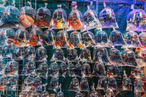 Spoed Foto op Canvas Hong-Kong goldfish market Mong Kok Kowloon Hong Kong