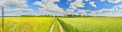 Foto auf Gartenposter Landschappen Panorama of a country road and summer fields