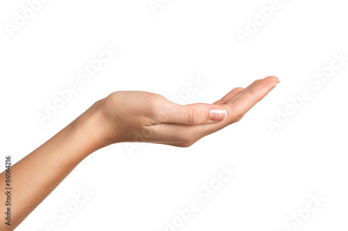 Beauty female hand