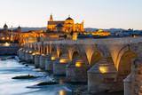 Roman bridge and Mosque-Cathedral in Cordoba