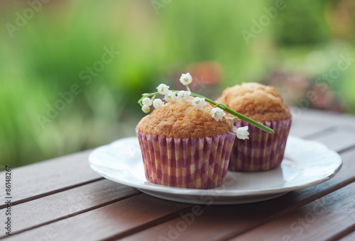 Muffiny Canvas Print